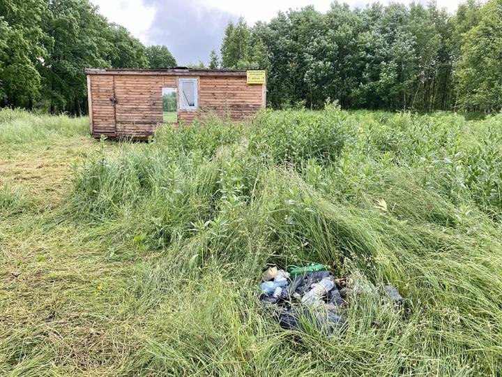 Отдыхающие загрязняют пруд под Ясной поляной