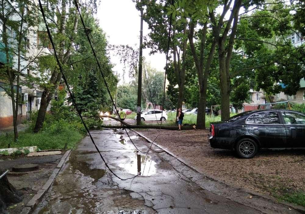 Щекино и район после ливня: фото