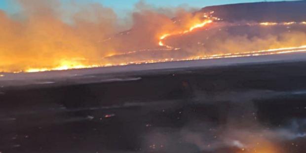 В Красноярском крае за ночь сгорело 130 гектаров травы
