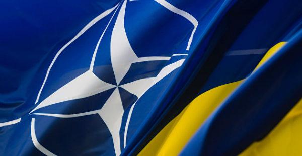Украину могут принять в НАТО, с Донбассом это не поможет - глава ЛНР