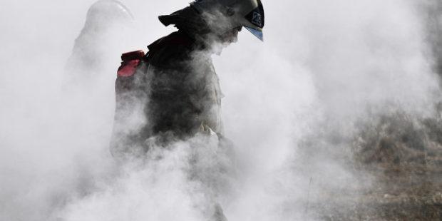 В Прикамье школьницы сожгли ферму ради ролика в TikTok