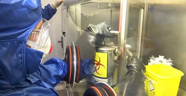 Торговка смертью: украинка украла из института штаммы опасного вируса для перепродажи