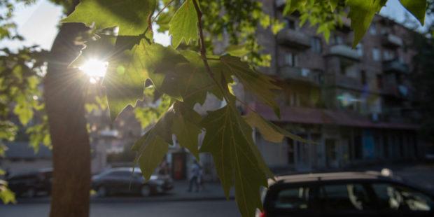 Какая погода будет в Ереване и областях Армении в ближайшие дни