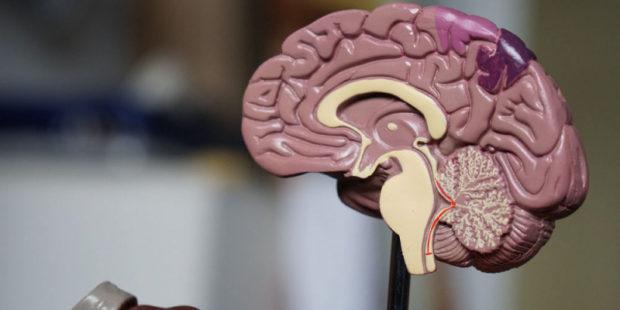 """Невролог объяснила, когда коронавирус может создать """"дыру в мозге"""""""