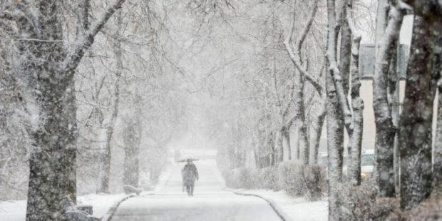 Снег в России может стать аномалией, предупреждают специалисты