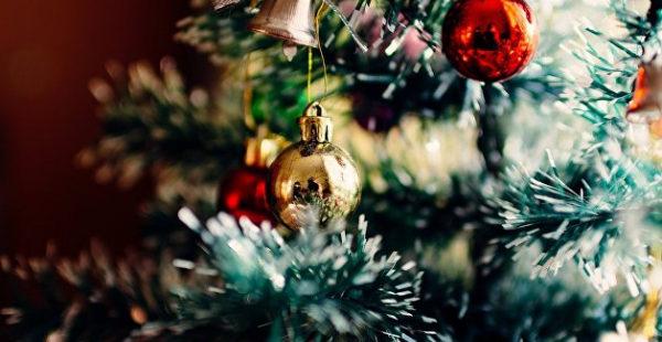 «Душа хочет праздника»: в Киеве заметили «апартаменты Санта-Клауса»