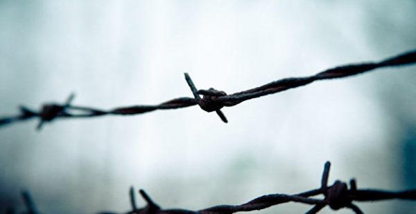 В Литве не хватило колючей проволоки для забора на границе с Белоруссией