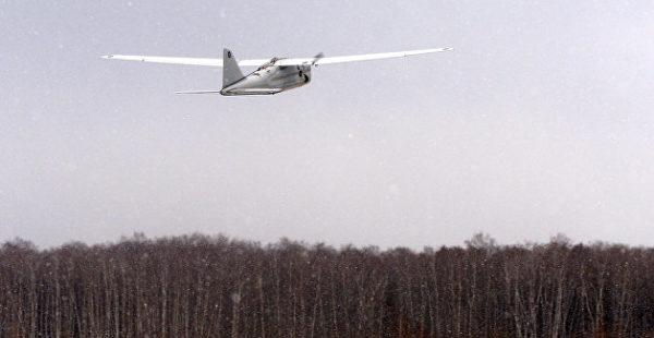Под Луганском упал беспилотник с самодельной бомбой