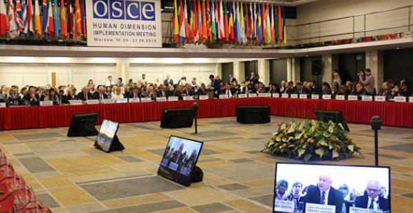 Европейский закон что дышло: делегация России в знак протеста покинула заседание ОБСЕ