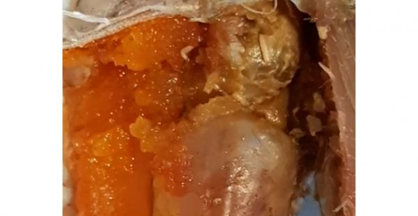 Жительницу Херсона ужаснула рыба с живой начинкой - видео