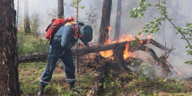 Генпрокуратура проконтролирует борьбу с лесными пожарами в Якутии