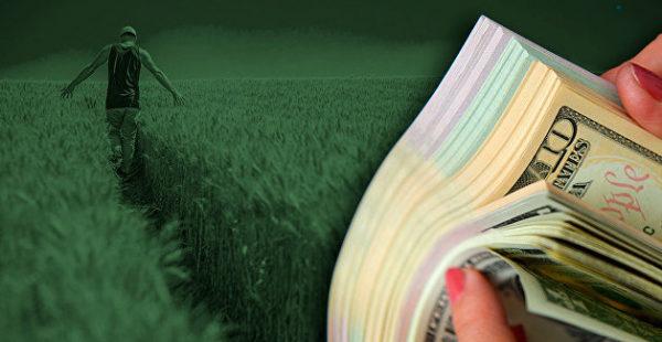 Зарегистрированы первые сделки по продаже земли на Украине после открытия рынка
