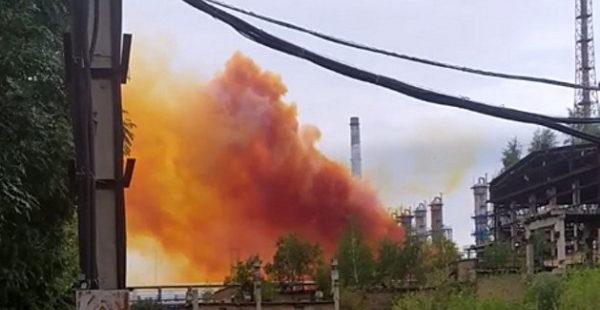 «Лисий хвост» угрожает Украине: химик предупредила об опасности