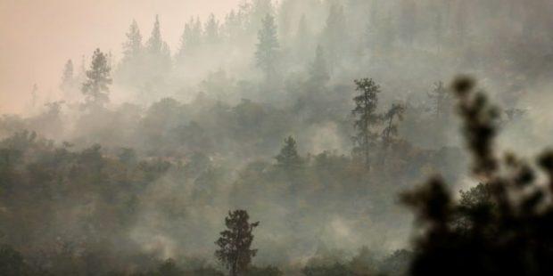 МЧС: Дым, пришедший в Югру из Якутии, не представляет опасности