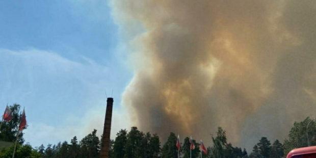 Пожар из Мордовского заповедника перешел на территорию Сарова