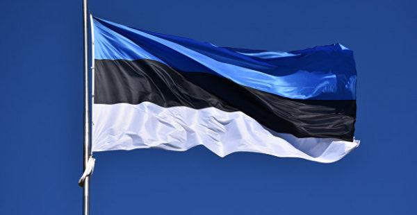 Эксперт рассказал, как на самом деле чувствуют себя в Эстонии русские и украинцы