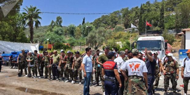 Как могут отразиться на Армении турецкие лесные пожары - МЧС объясняет