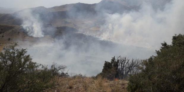 Пожар рядом с Хосровским заповедником в Армении окончательно потушен