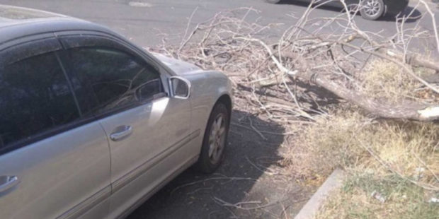 Сильный ветер в Ереване сорвал крыши домов и повредил деревья