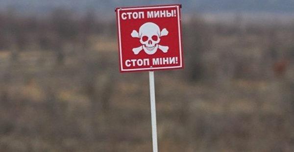Директор украинской компании предложила особый способ уничтожения российских кораблей