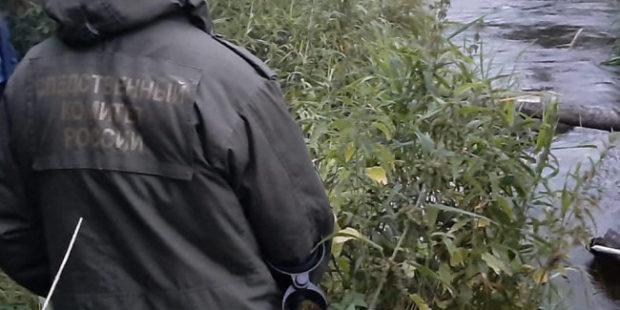 В Ленобласти в реке Ижоре обнаружили скелетированные останки ребенка