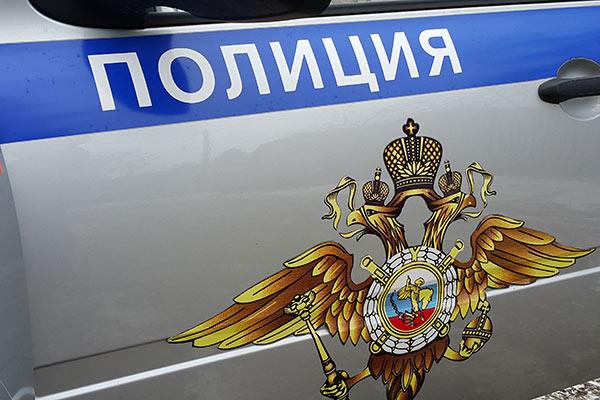 В Донском полицейские задержали похитителя торцевых головок