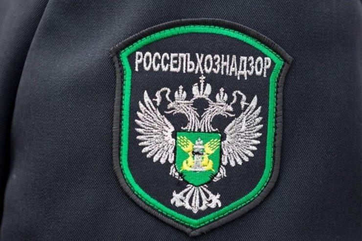 Заокскую птицефабрику оштрафовали на 100 тысяч рублей за незаконное сожжение кур