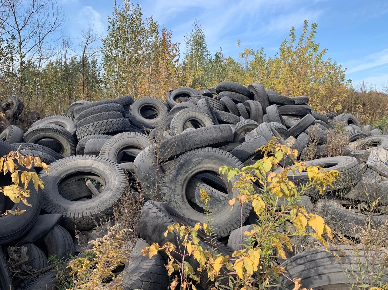В Пролетарском районе Тулы за предприятием обнаружили свалку шин