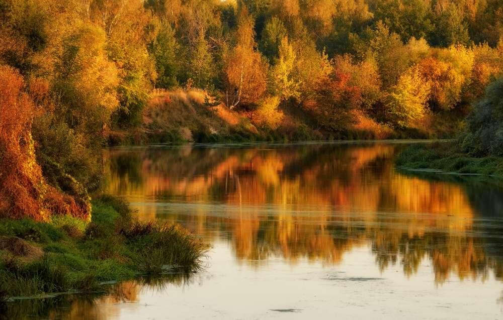 Погода в Щекино 4 сентября 2020 года