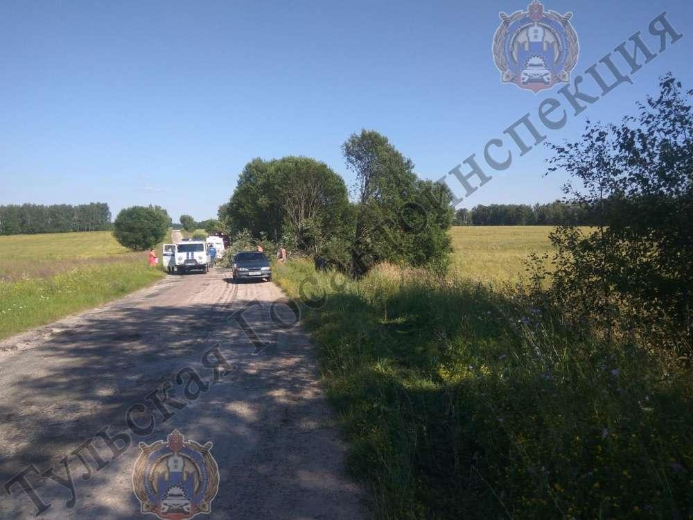 В Щекинском районе нетрезвый водитель сбил пенсионерку