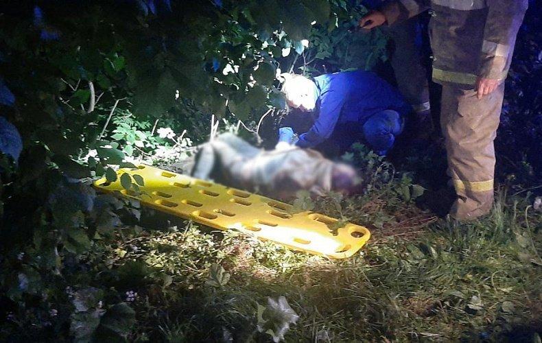 Полиция нашла виновника смертельного ДТП в Узловском районе