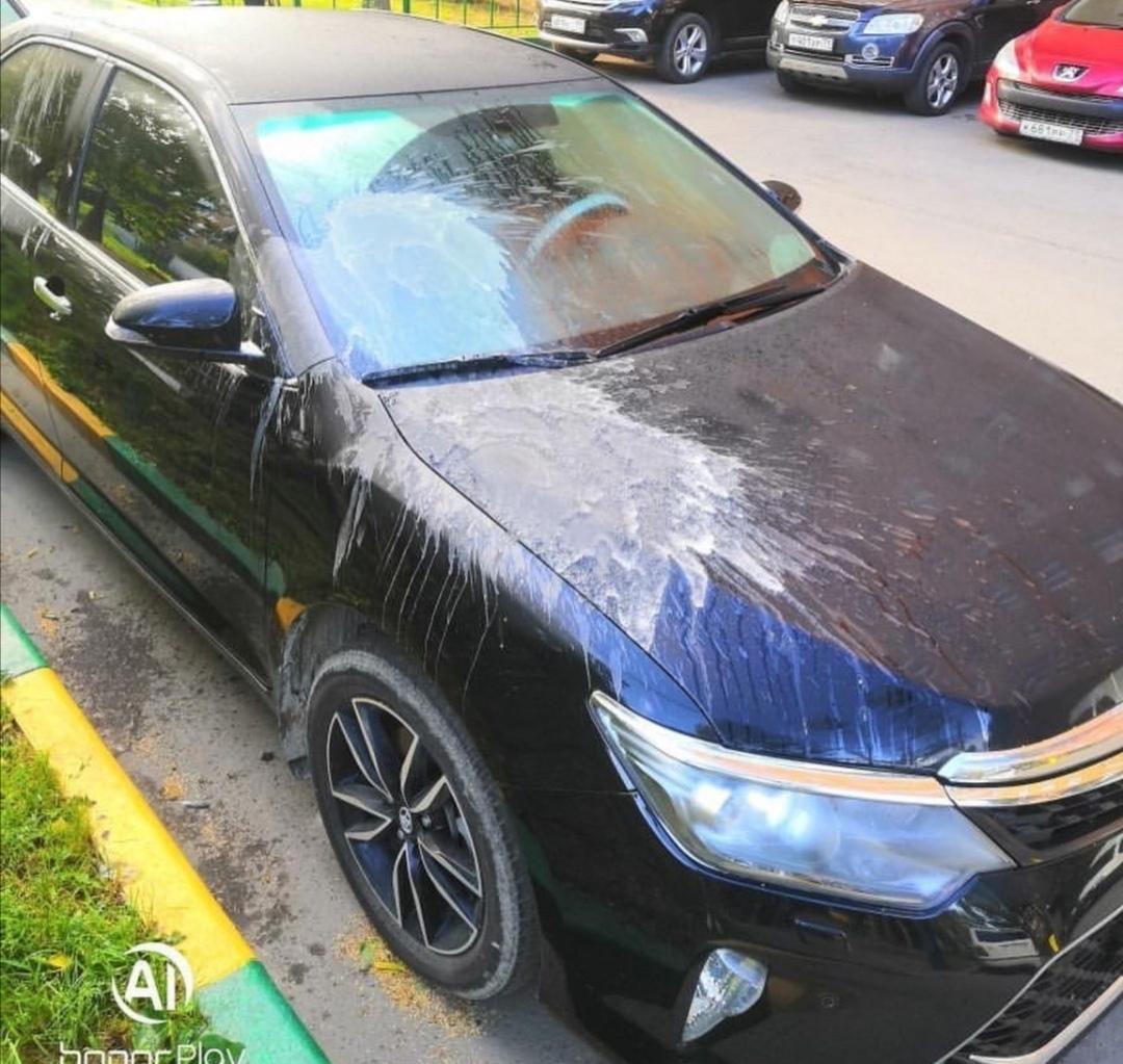 В центре Тулы автомобиль облили неизвестной «химией»