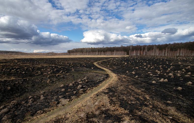 За неделю тульские пожарные больше 100 раз тушили сухую траву