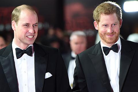 """Принцы Гарри и Уильям до сих пор почти не общаются из-за """"Мегзита"""""""