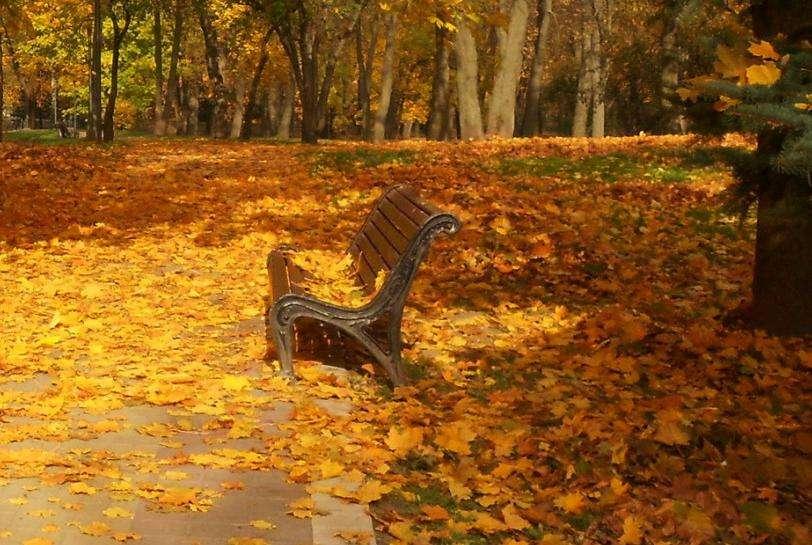 Погода в Щекино 17 сентября 2020 года