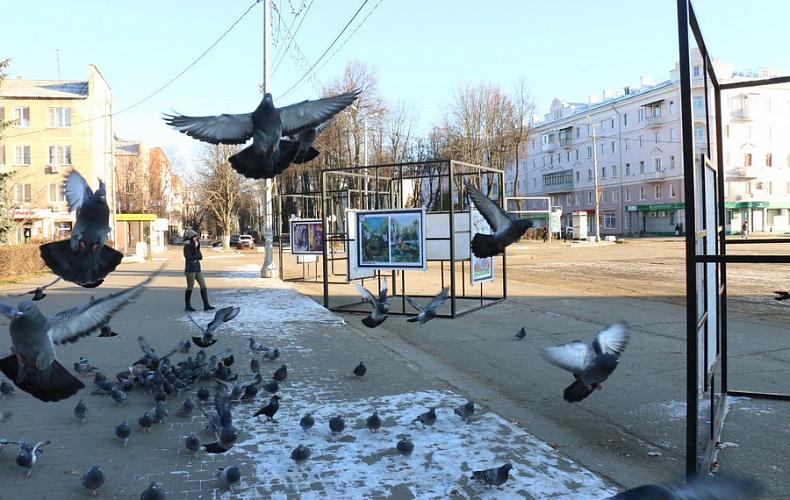 В центре Новомосковска обновили экспозицию в кубах