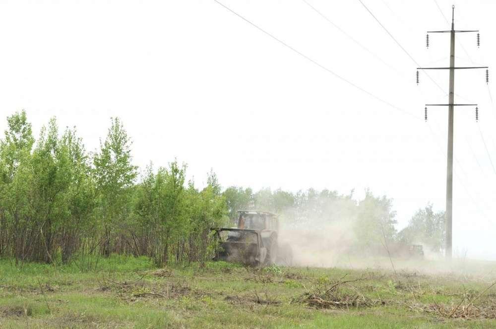 «Россети Центр и Приволжье Тулэнерго» расчистило более 600 гектаров просек в первом полугодии 2020 года