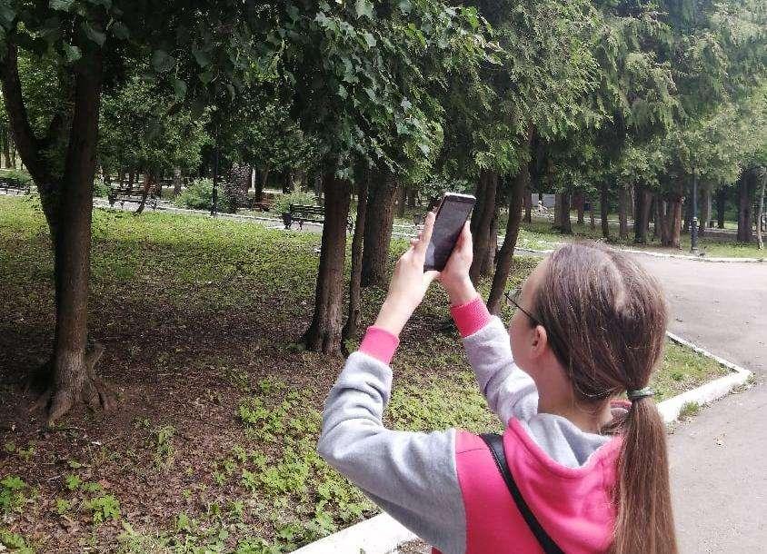 Щекинцы сфотографировали любимый уголок городского парка