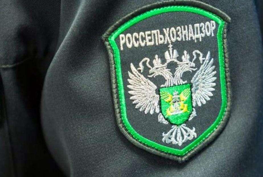 Владелец ЛПХ в Щекинском районе содержал животных в антисанитарных условиях