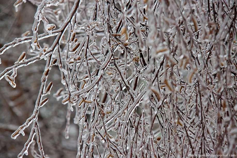 Погода в Щекино 20 ноября 2020 года