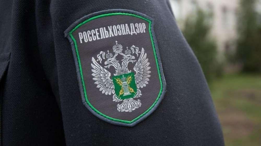 Собственник земельных участков в Щекинском районе превратил их в свалку