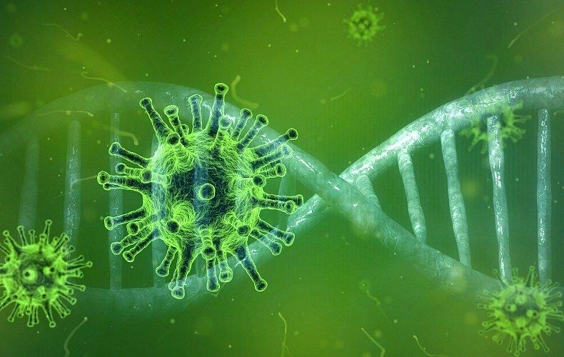 37 туляков заболели, 38 выздоровели: COVID-19 в Тульской области