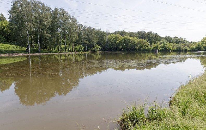 Частичная расчистка рек Шиворонь и Дон в Тульской области завершится к 2021 году