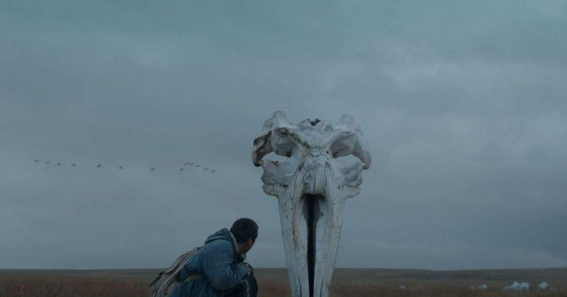 Вышел трейлер фильма «Китобой», награжденного на Венецианском кинофестивале