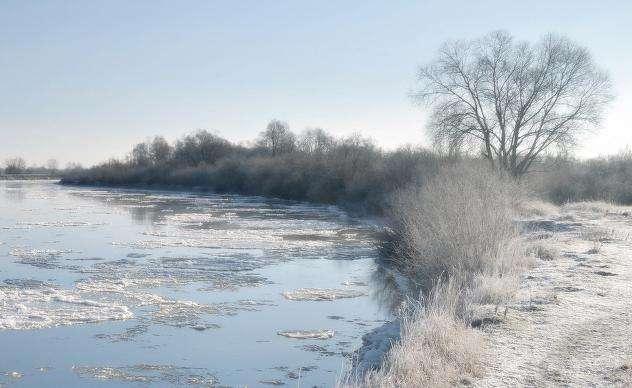 Погода в Щекино 25 ноября 2020 года