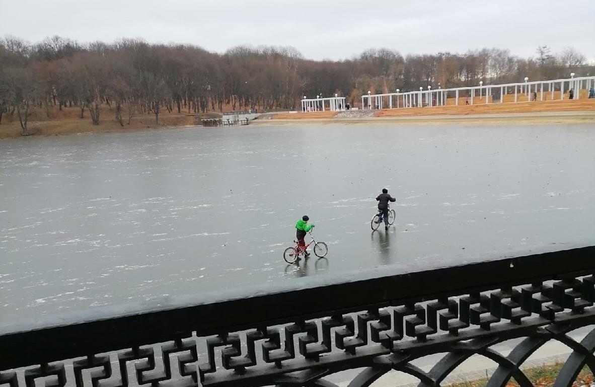 В Богородицке двое детей разъезжали на велосипедах по замерзшему пруду: родители привлечены к ответственности