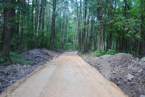 В парке «Лесная поляна» прокладывают новые дорожки