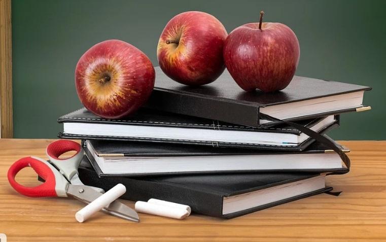 Тульские школы ушли на двухнедельные каникулы
