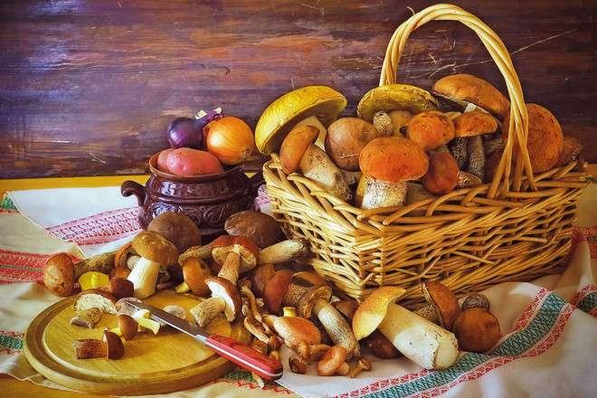 Щекинцам рассказали о мерах профилактики отравления грибами