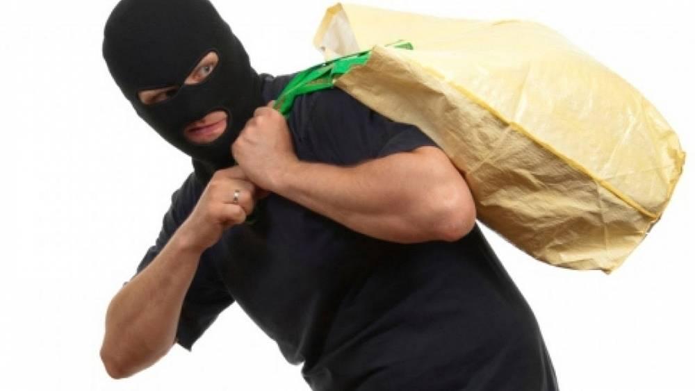 Щёкинец получил год колонии  строгого режима за кражу